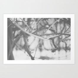 Winter Wonderland III Art Print
