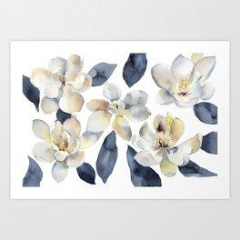 White Magnolias Watercolor Design Magnolia Grandiflora Floral Design Art Print
