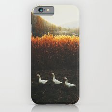 Walking geese iPhone 6s Slim Case
