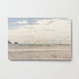 Seagulls feeding frenzy Metal Print