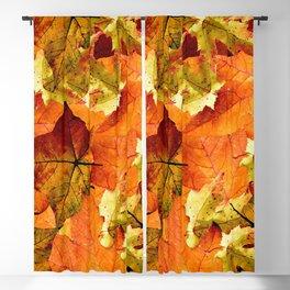 Fallen Autumn Leaves Blackout Curtain