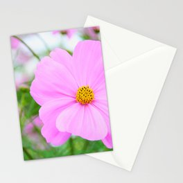 COSMOS -Pink II Stationery Cards