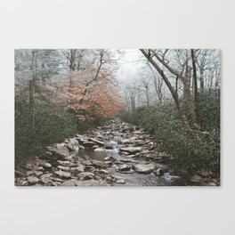 Winter Water Canvas Print