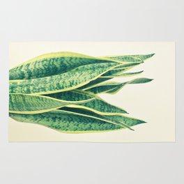 Snake Plant Rug