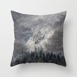 Winter Landscape Fine Art Throw Pillow