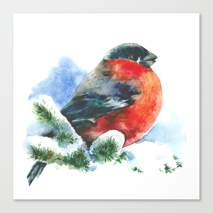 Christmas watercolor bullfinch Canvas Print