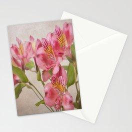 Pink Peruvian Lilies Alstroemeria Stationery Cards