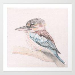 Kookaburra Cuteness Art Print