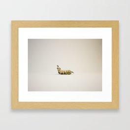 oruga Framed Art Print