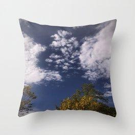 Trees and Beautiful Sky Throw Pillow