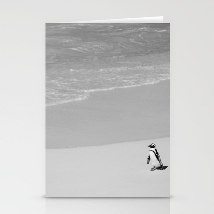 Lone African Penguin walking on beach Stationery Cards