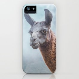 Curious, wise looking guanacao / llama on a blue misty morning in the Andes mountains, Peru iPhone Case