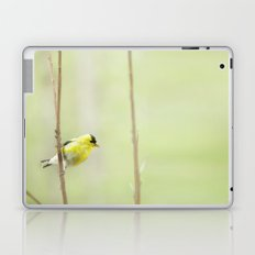 Little Mellow Yellow Laptop & iPad Skin