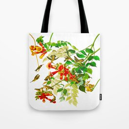 Ruby-throated Humming Bird Tote Bag