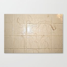Hair on Ceramic Tile Canvas Print