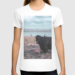 Vintage photography - Highland Cow, Thurso, Scotland T-shirt