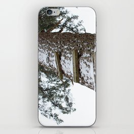 Stairway to Snow iPhone Skin