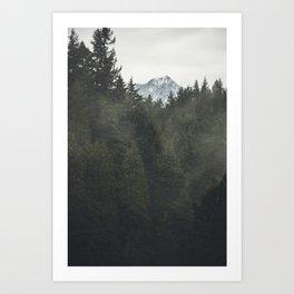 British Columbia Trees Art Print