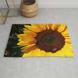 You Are My Sunshine Rug