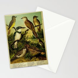 Crested Flycatcher Belted Kingfisher Nighthawk Yellow billed Cuckoo Wood Pewee Acadian Flycatcher Whip poor will2 Stationery Cards