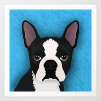 terrier Art Prints featuring Boston terrier by Nir P