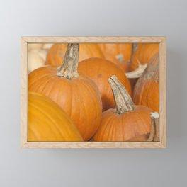 Orange Pumpkins for Halloween Framed Mini Art Print