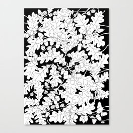 Composition of Oak Leaves and Acorns Canvas Print