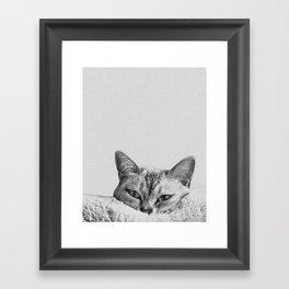 Minimalist grey cat Framed Art Print