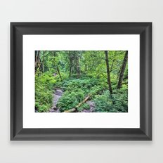 Winding Down the Hills Framed Art Print