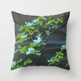 Dogwood Blossoms I Throw Pillow