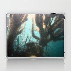Deep Blue Reef Laptop & iPad Skin
