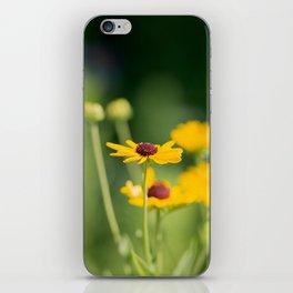 Portrait of a Wildflower in Summer Bloom iPhone Skin