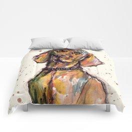 Hungarian Vizsla Dog Closeup Comforters