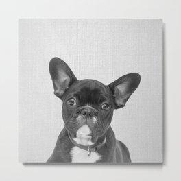Bulldog Puppy - Black & White Metal Print