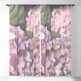 Hydrangeas Sheer Curtain