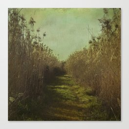 The path into the unknown Canvas Print