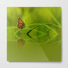Orange butterfly feflection Metal Print