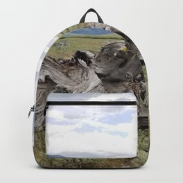 Wilderness Wood Sculpture Backpack