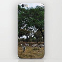Zebras. iPhone Skin