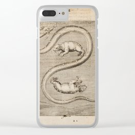 Hugo de Groot's Syntagma Arateorum 1600 - 01 Ursa Major, Ursa Minor & Draco Clear iPhone Case