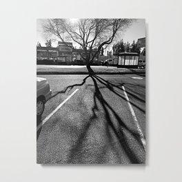 Shadow Tree - Pacific Northwest Metal Print