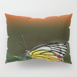 Butterfly Staring at Sunset Pillow Sham