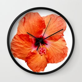 Just the Hibiscus Wall Clock