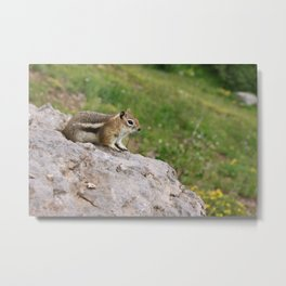 Just Chillin' Metal Print