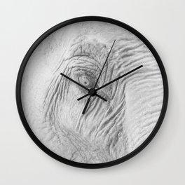 Elephant eye Wall Clock