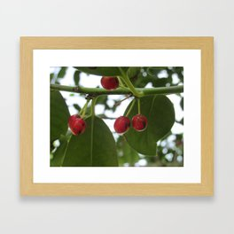 Lips Stained Red Framed Art Print