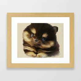 Pommy Framed Art Print