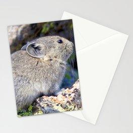 Watercolor Pika 08, Trail Ridge Road, RMNP, Colorado, Springtime Snow Melt Emergence Stationery Cards