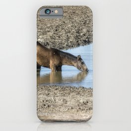 Thirst iPhone Case