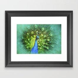 Peacock Pinwheel Framed Art Print